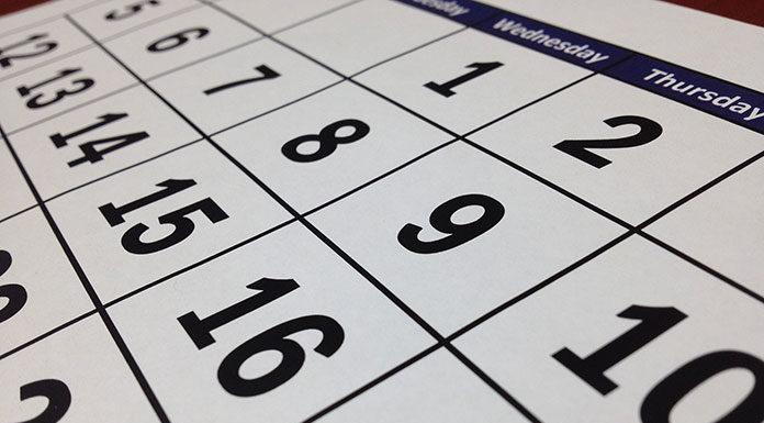 Kalendarz A5 dzienny czy tygodniowy? Jak wybrać najlepszy kalendarz?